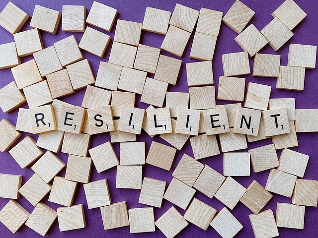Resilience. resister et se relancer Alexis Roquette